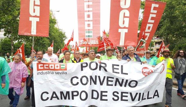 Marcha de trabajadores del campo en Sevilla.