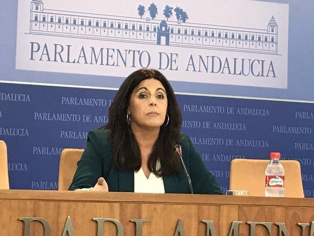 La parlamentaria del PSOE-A Ángeles Férriz en rueda de prensa en el Parlamento