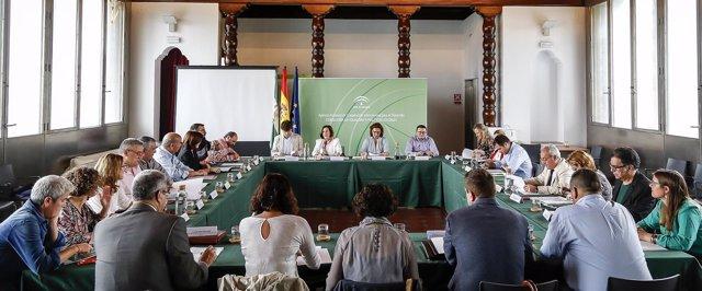 La consejera de Igualdad preside el Consejo Andaluz  del Voluntariado