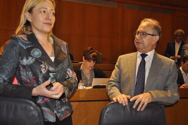 Gastón y Gimeno, en el pleno de las Cortes este miércoles