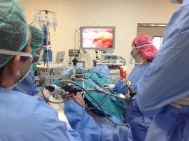 Expertos del H. Universitario del Henares enseñan a expertos internacionales una cirugía de otorrinolaringología
