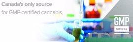 Chile se convierte en el primer país de Latinoamérica en vender medicamentos fabricados a base de cannabis