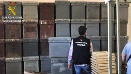 Dos detenidos por robar 223 colmenas de abejas en Valencia, Murcia y Albacete