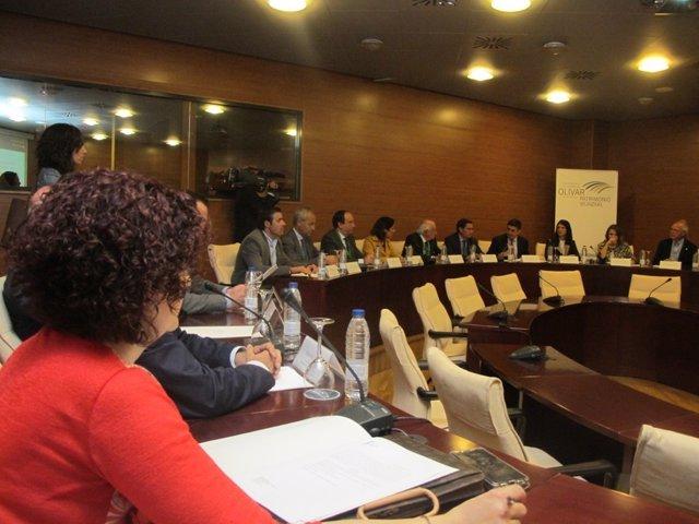 Reunión de la comisión para la declaración del Paisaje Cultural del Olivar.