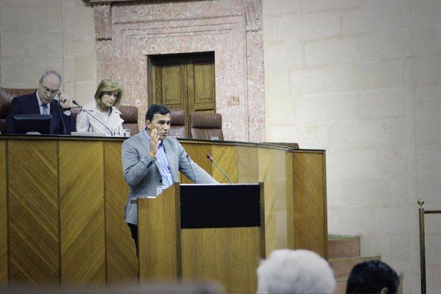 El parlamentario de Cs Carlos Hernández en el Pleno del Parlamento andaluz