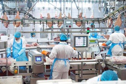 BonÀrea Corporación reparte 11,8 millones en beneficios