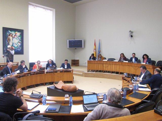 Comisión de Agricultura en el Parlamento de Galicia