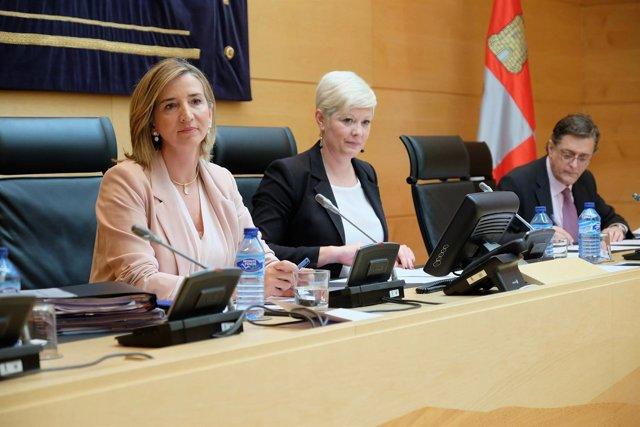 Alicia García comparece en la Comisión de Economía y Hacienda