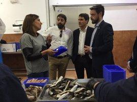 Empresas de la provincia buscan consolidarse en el mercado internacional amparadas en la marca Granada