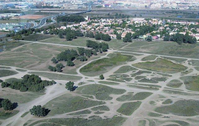 Concesión de terrenos al Málaga