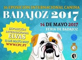 Perros de toda España y Europa se dan cita este domingo en una exposición en Badajoz