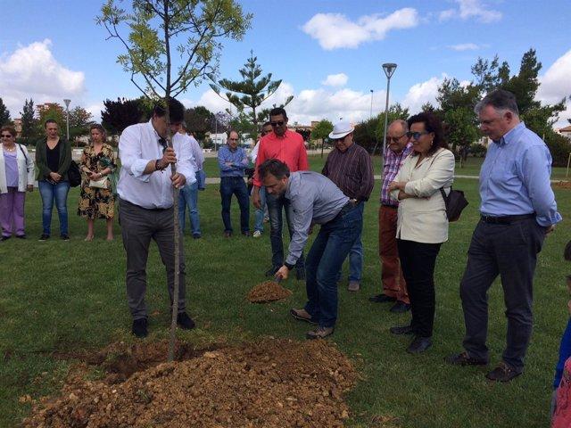 El consejero de Medio Ambiente participa en una plantación de árboles en Huelva