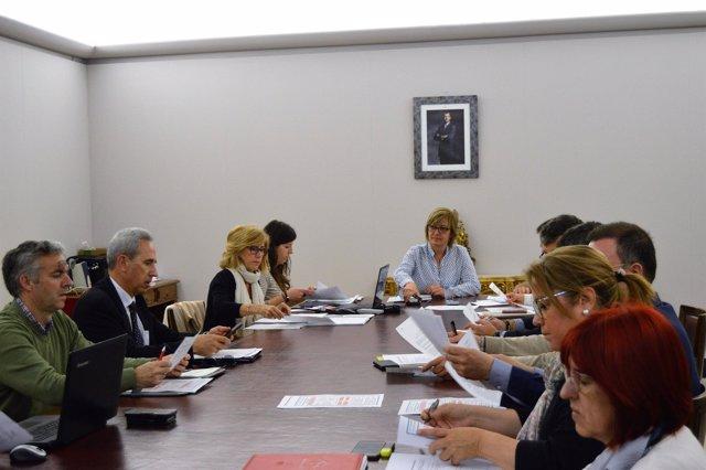 Reunión del Consejo Sectorial de Desarrollo de Huesca