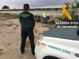 Detenidos los presuntos autores de dos robos de colmenas en explotaciones apícolas de Níjar (Almería)