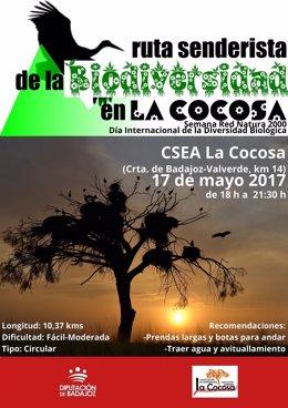 Nota Informativa. Rutas Senderistas Sobre La Biodiversidad En La Cocosa