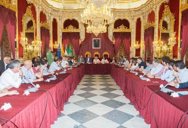 Consesjo de Alcaldías de Diputación de Cádiz