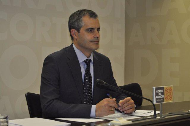 Javier Martínez (Cs)