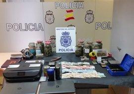 Ocho detenidos en Castellar por vender cannabis en la asociación 'Hermandad de San Canuto'