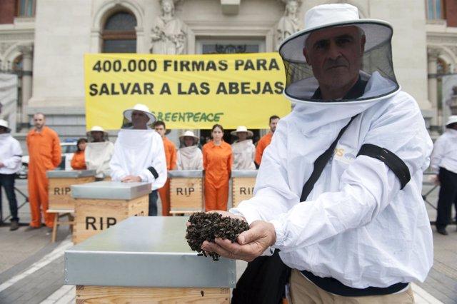 Activistas de Greenpeace piden a España que apoye prohibir los neonicotinoides