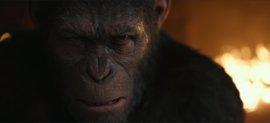 Sin paz, sin piedad: Tráiler final de La guerra del planeta de los simios