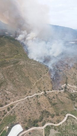 Incendio en la provincia de Granada, en Salobreña