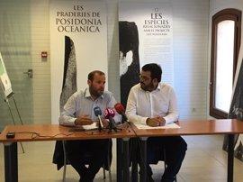 Baleares será la primera comunidad en garantizar la protección de la posidonia con un Decreto