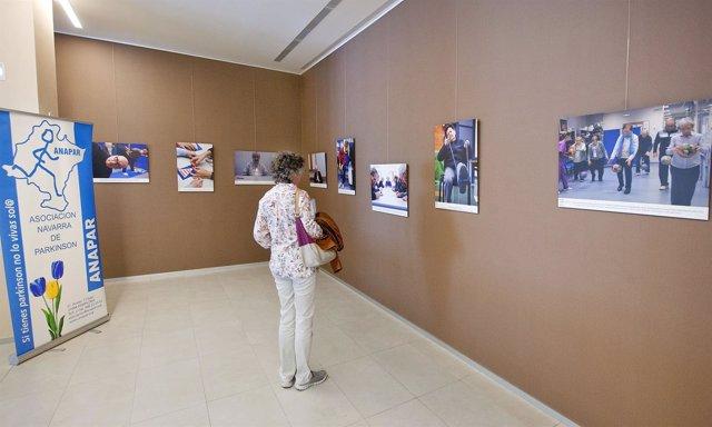 Exposición sobre Anapar.
