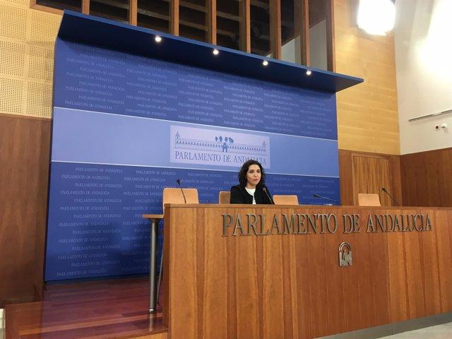 La parlamentaria del PSOE-A Noelia Ruiz en rueda de prensa
