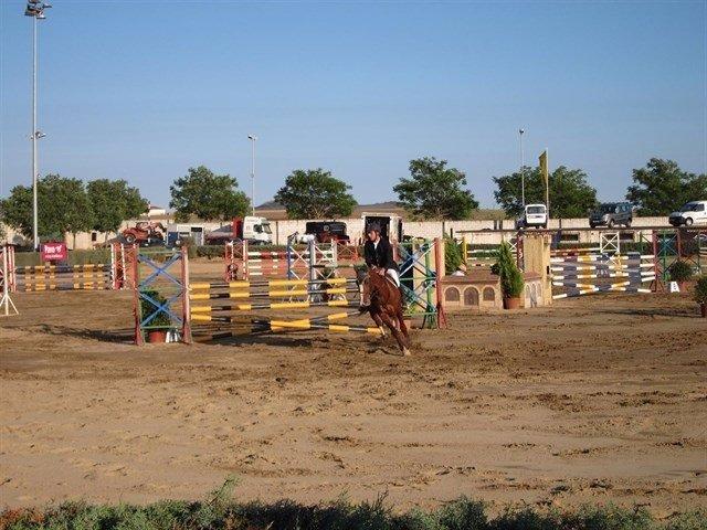 Concurso Nacional de Saltos de Cáceres