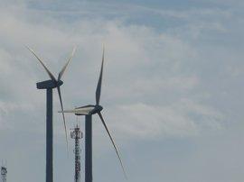 Forestalia, Gas Natural, Endesa y Gamesa se adjudican más de 2.500 MW en la subasta de renovables