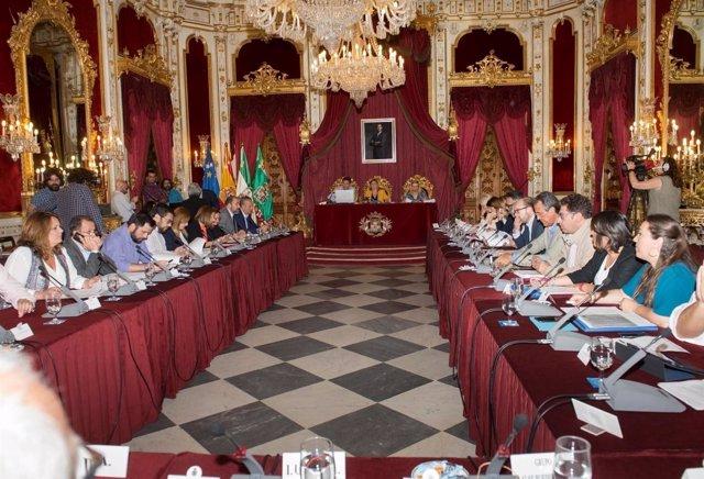 El Pleno de Diputación celebrado este mes de mayo
