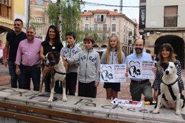 La Plaza de La Llama de Torrelavega acogerá el domingo un 'Desfile Canino de Adopción'