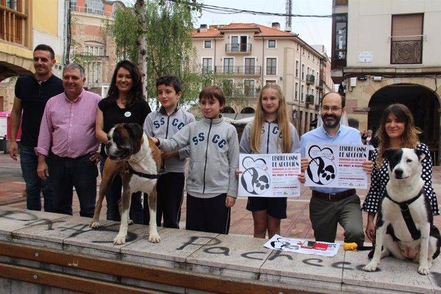 Nota, Foto Y Audios Desfile Canino De Adopción.Doc