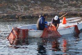 Comunidad y UMU continuarán investigando los efectos de la declaración de la Reserva Marina de Cabo de Palos