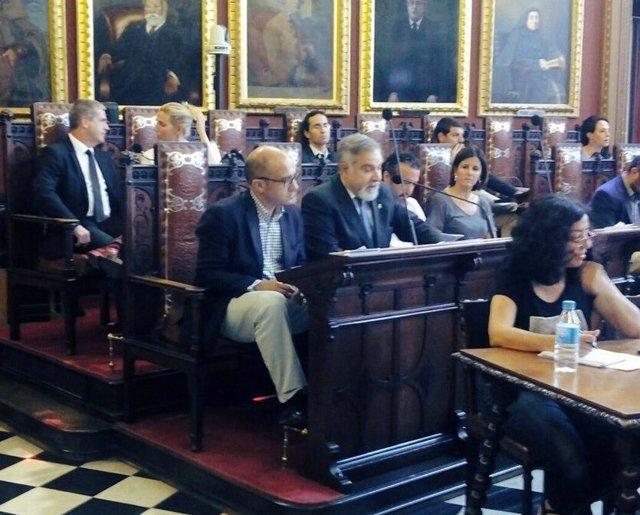 Los regidores de Cs Palma en el Ayuntamiento