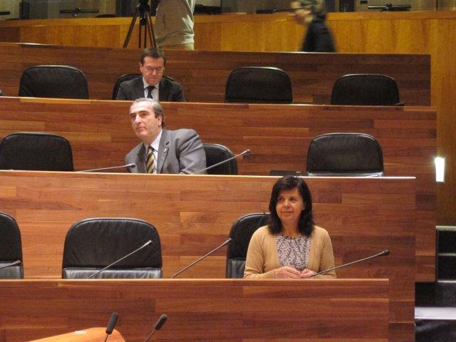La consejera María Jesús Álvarez, durante el pleno de la Junta.