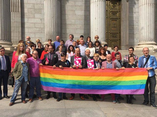 Registro en el Congreso de la Ley de Igualdad LGTBI