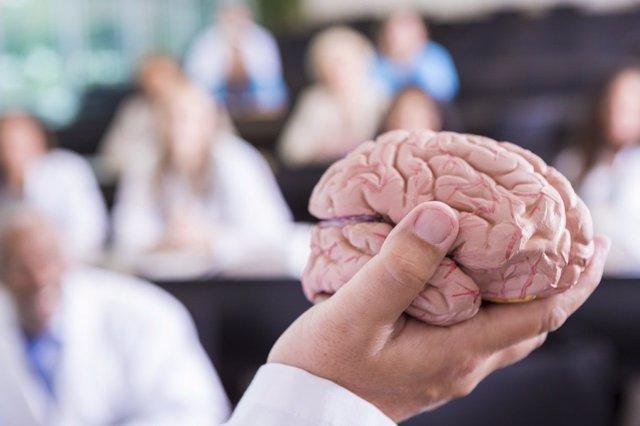 Máster en Neuropsicopedagogía online