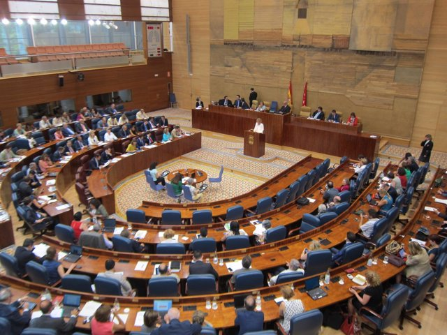 Pleno Asamblea De Madrid