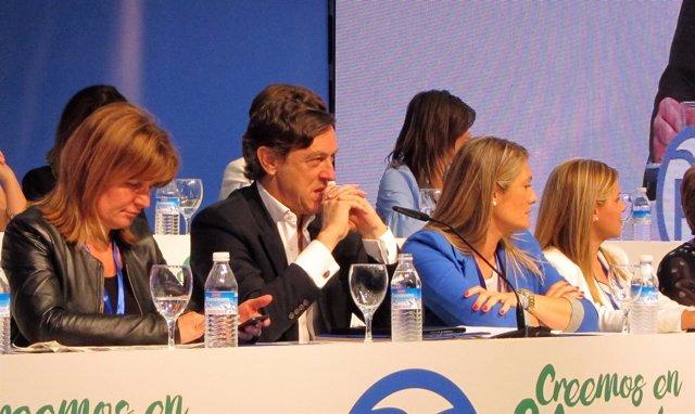 Rafael Hernando (PP) en el Congreso Provincial del PP de Almería