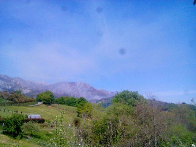 Incendio forestal en Paraes (Piloña).