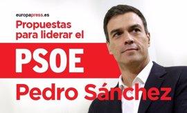 Consulta aquí el programa de Pedro Sánchez a las primarias del PSOE 2017