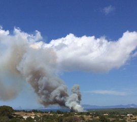 Declarado un incendio en Cala Saona, en Formentera