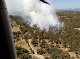 El fuego de Cala Saona, en Formentera, declarado de Nivel 1