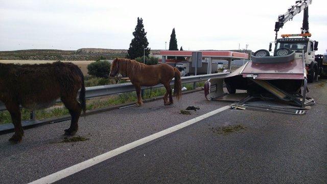 Dos heridos graves en un accidente en la A-2 en Zaragoza.