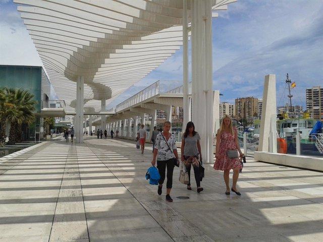 Turistas palmeral de las Sorpresas Muelle Uno Puerto Málaga