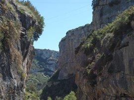 Navarra contará este año con planes de gestión de todos los espacios de la Red Natura 2000