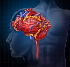 Insuficiencia cardiaca con ictus, una combinación letal