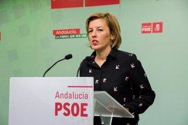 """PSOE ve """"mala noticia"""" que el Gobierno """"se empeñe en licitar un AVE de segunda"""" para Almería"""