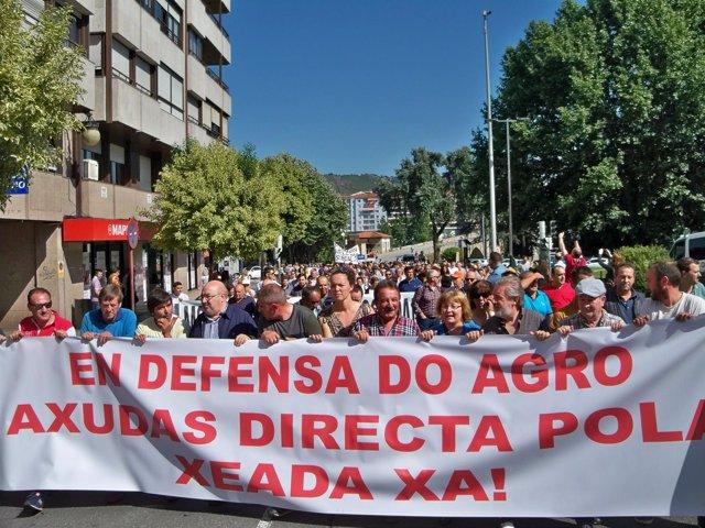 Protesta en Ourense para reclamar ayudas por las heladas